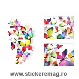 Set de 12 fluturi 3D sticker curcube