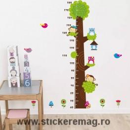 Sticker Copacul Taliometru